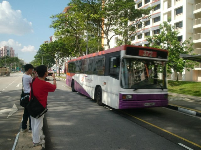 Taking pictures of buses on a narrow divider