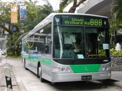 Transperth OC500LE in Singapore, photo from http://igunzel.perthbus.info/