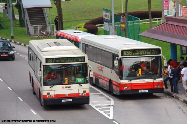 Scania L113s of Walter Alexander and ELBO bodyworks meet at Admiralty MRT