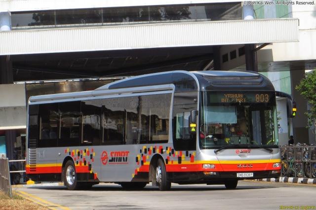 SMRT MAN NL323F (SMB3108P) - Service 803