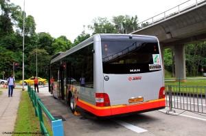 SMB1483T - Rear